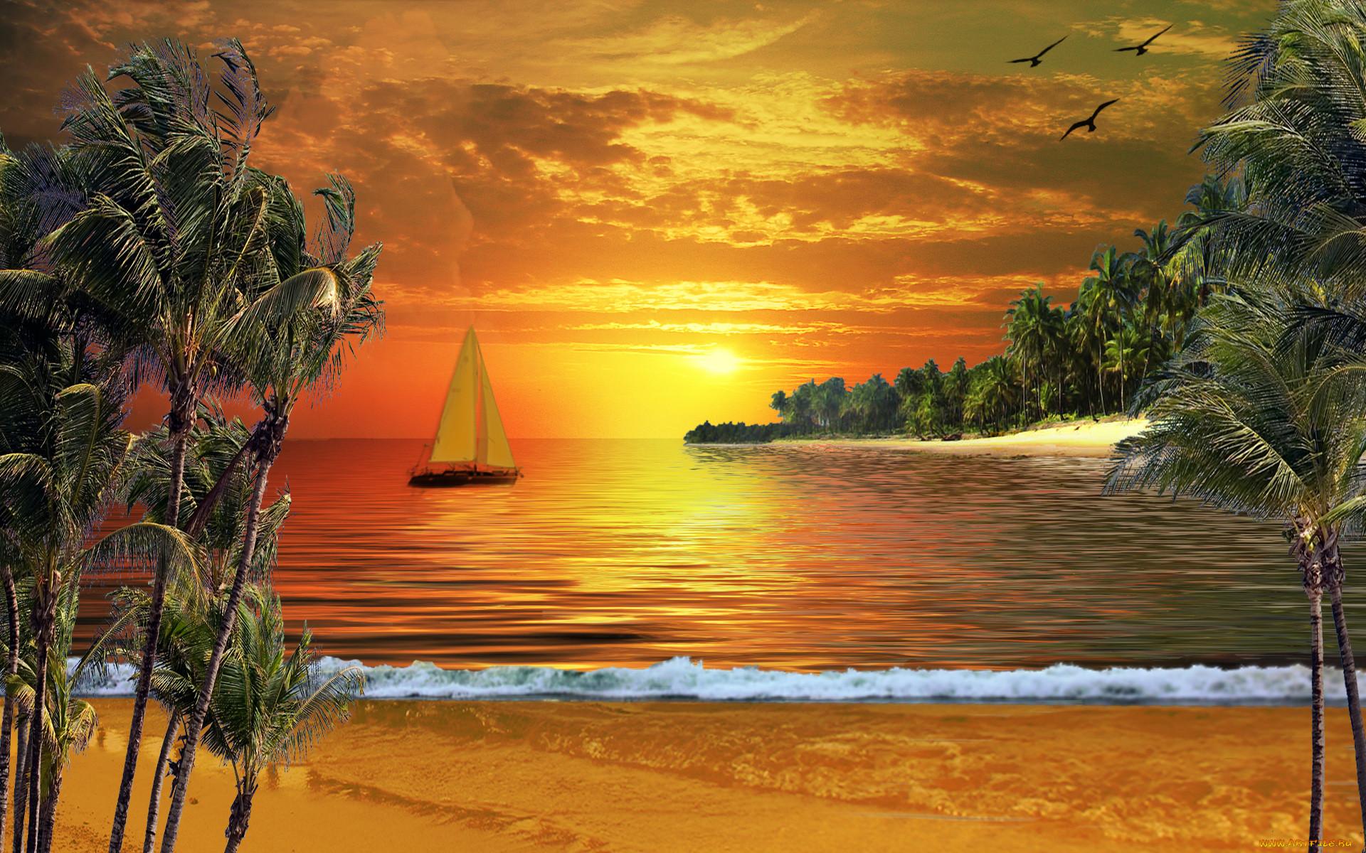 Анимационные картинки лето море